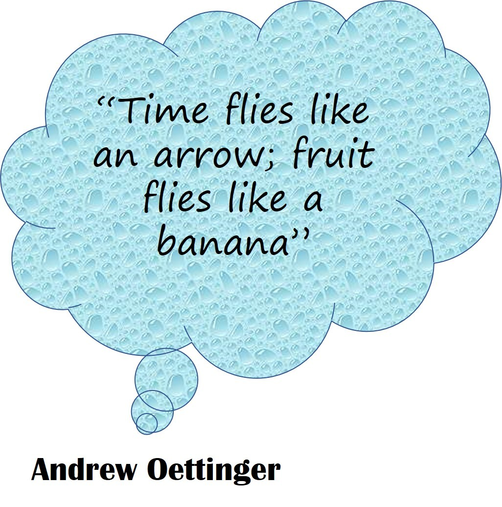 Andrew Oettinger quote
